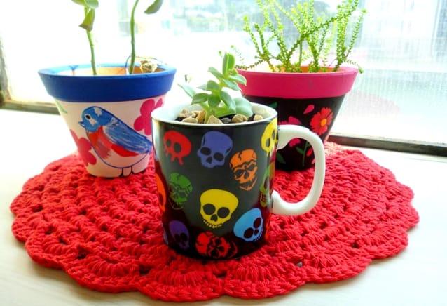 como plantar suculenta em xícara-