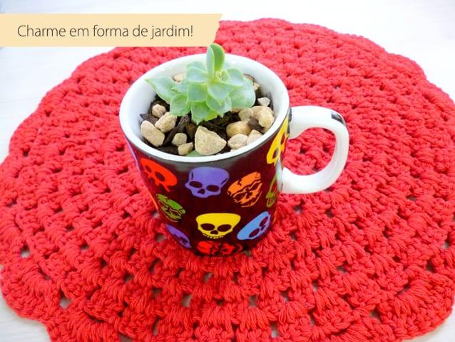 como plantar suculenta em xícara-3