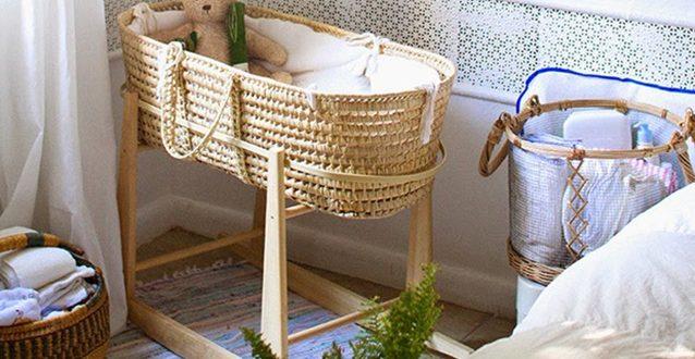 cestaria o que é