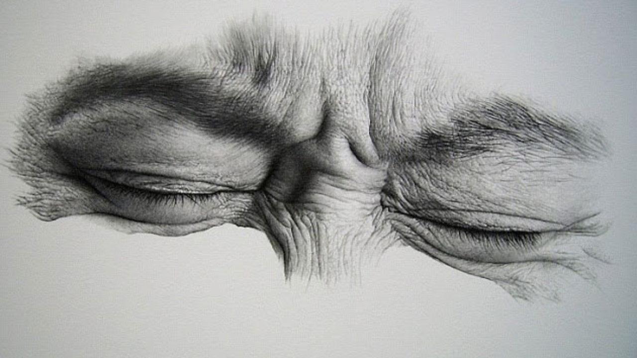 Desenho Com Grafite Conheça A Técnica Blog Do Elo7