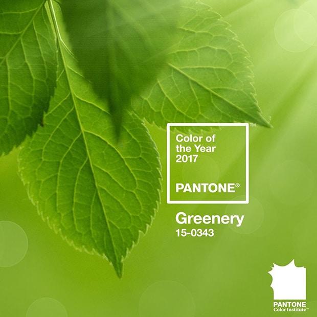 greenery-e-a-cor-pantone-2017